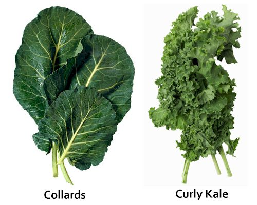 Kale & Collards